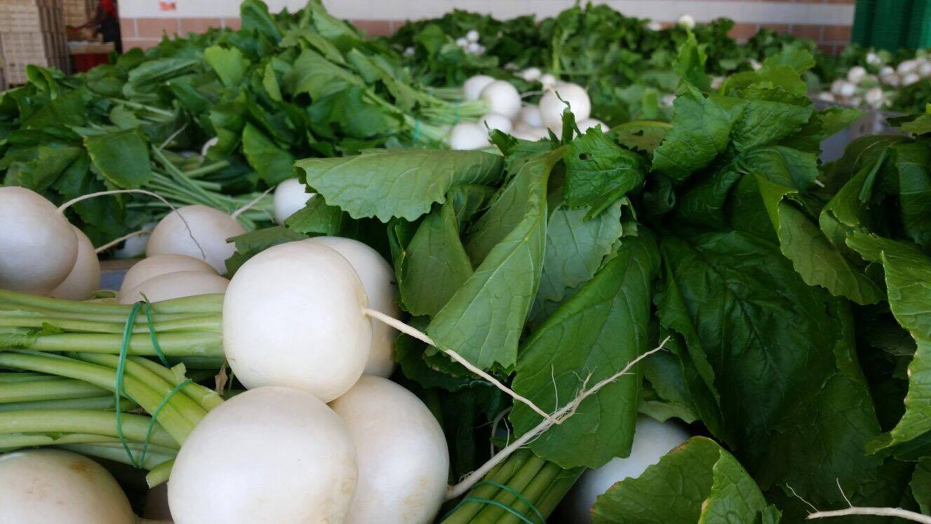 Export agroalimentare:  FORCINA ITALIAN PRODUCE specialista nel settore